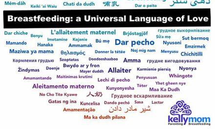 L'allaitement dans toutes les langues