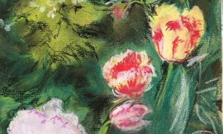 Tulipes à Cambo-les-Bains