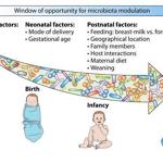 Un bon microbiote dès la naissance, et même avant