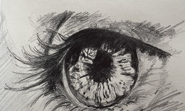 L'œil grand ouvert
