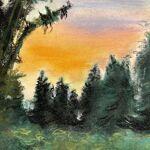 Coucher de soleil dans la forêt vosgienne